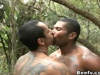Two Beefy Have a Anal Fucking in Forest